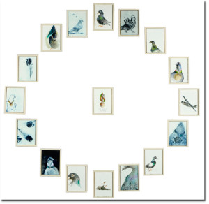 Lisa Sewards Pigeons Mar 2015 shadow2